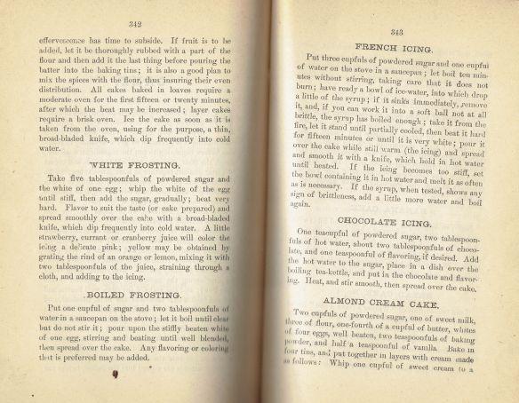 1891 Warner's Safe Cookbook (5th Ed. 1891)(Recipes)