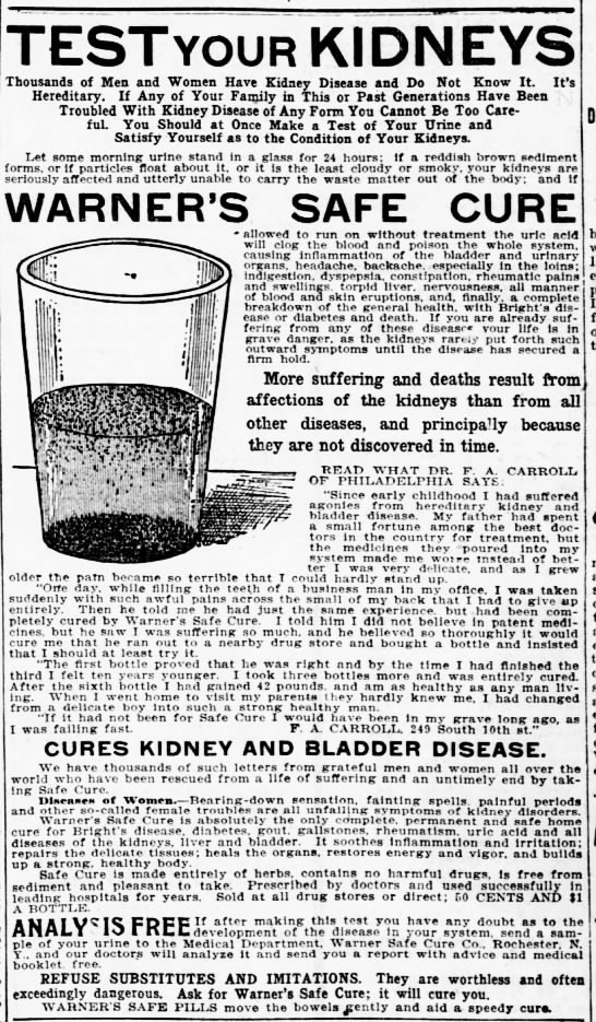 Test Your Kidneys - St. Louis Post-Dispatch (St. Louis, MO) - 6 Dec 1903